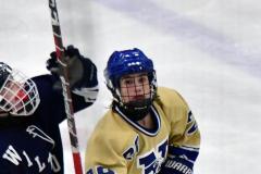 CIACT D3 Ice Hockey; #8 Newtown 7 vs. #9 Wilton 2 - Photo # 1527