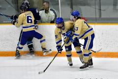CIACT D3 Ice Hockey; #8 Newtown 7 vs. #9 Wilton 2 - Photo # 1537