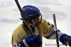 CIACT D3 Ice Hockey; #8 Newtown 7 vs. #9 Wilton 2 - Photo # 1653