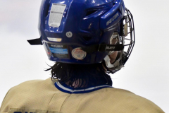 CIACT D3 Ice Hockey; #8 Newtown 7 vs. #9 Wilton 2 - Photo # 1673