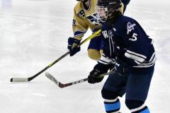 CIACT D3 Ice Hockey; #8 Newtown 7 vs. #9 Wilton 2 - Photo # 1687