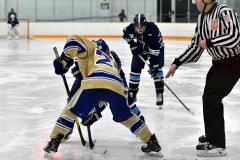 CIACT D3 Ice Hockey; #8 Newtown 7 vs. #9 Wilton 2 - Photo # 1693