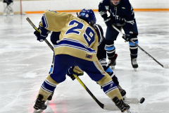 CIACT D3 Ice Hockey; #8 Newtown 7 vs. #9 Wilton 2 - Photo # 1695