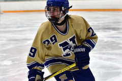 CIACT D3 Ice Hockey; #8 Newtown 7 vs. #9 Wilton 2 - Photo # 1701