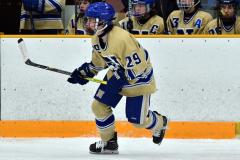 CIACT D3 Ice Hockey; #8 Newtown 7 vs. #9 Wilton 2 - Photo # 1766