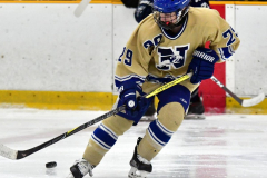 CIACT D3 Ice Hockey; #8 Newtown 7 vs. #9 Wilton 2 - Photo # 1768