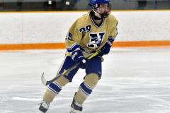 CIACT D3 Ice Hockey; #8 Newtown 7 vs. #9 Wilton 2 - Photo # 1776