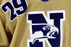 CIACT D3 Ice Hockey; #8 Newtown 7 vs. #9 Wilton 2 - Photo # 181