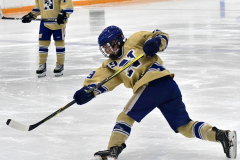 CIACT D3 Ice Hockey; #8 Newtown 7 vs. #9 Wilton 2 - Photo # 188