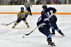 CIACT D3 Ice Hockey; #8 Newtown 7 vs. #9 Wilton 2 - Photo # 1903