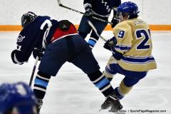 CIACT D3 Ice Hockey; #8 Newtown 7 vs. #9 Wilton 2 - Photo # 1914