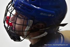 CIACT D3 Ice Hockey; #8 Newtown 7 vs. #9 Wilton 2 - Photo # 2124