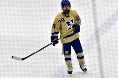 CIACT D3 Ice Hockey; #8 Newtown 7 vs. #9 Wilton 2 - Photo # 2194