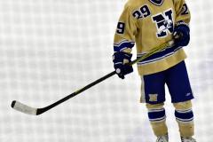 CIACT D3 Ice Hockey; #8 Newtown 7 vs. #9 Wilton 2 - Photo # 2195