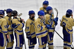CIACT D3 Ice Hockey; #8 Newtown 7 vs. #9 Wilton 2 - Photo # 2238