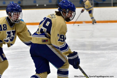 CIACT D3 Ice Hockey; #8 Newtown 7 vs. #9 Wilton 2 - Photo # 272