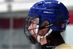 CIACT D3 Ice Hockey; #8 Newtown 7 vs. #9 Wilton 2 - Photo # 297