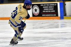 CIACT D3 Ice Hockey; #8 Newtown 7 vs. #9 Wilton 2 - Photo # 305