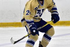 CIACT D3 Ice Hockey; #8 Newtown 7 vs. #9 Wilton 2 - Photo # 307