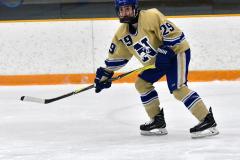 CIACT D3 Ice Hockey; #8 Newtown 7 vs. #9 Wilton 2 - Photo # 310