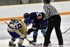 CIACT D3 Ice Hockey; #8 Newtown 7 vs. #9 Wilton 2 - Photo # 583