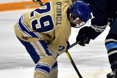 CIACT D3 Ice Hockey; #8 Newtown 7 vs. #9 Wilton 2 - Photo # 585