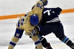CIACT D3 Ice Hockey; #8 Newtown 7 vs. #9 Wilton 2 - Photo # 586