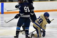 CIACT D3 Ice Hockey; #8 Newtown 7 vs. #9 Wilton 2 - Photo # 590