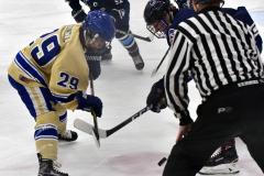 CIACT D3 Ice Hockey; #8 Newtown 7 vs. #9 Wilton 2 - Photo # 615