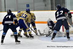 CIACT D3 Ice Hockey; #8 Newtown 7 vs. #9 Wilton 2 - Photo # 627
