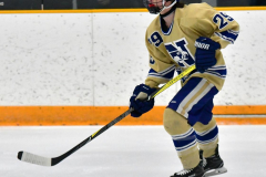 CIACT D3 Ice Hockey; #8 Newtown 7 vs. #9 Wilton 2 - Photo # 632