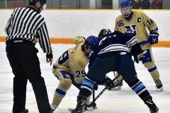 CIACT D3 Ice Hockey; #8 Newtown 7 vs. #9 Wilton 2 - Photo # 663