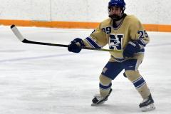 CIACT D3 Ice Hockey; #8 Newtown 7 vs. #9 Wilton 2 - Photo # 698