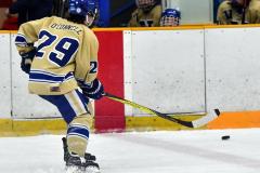 CIACT D3 Ice Hockey; #8 Newtown 7 vs. #9 Wilton 2 - Photo # 724