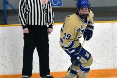 CIACT D3 Ice Hockey; #8 Newtown 7 vs. #9 Wilton 2 - Photo # 729