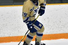 CIACT D3 Ice Hockey; #8 Newtown 7 vs. #9 Wilton 2 - Photo # 730