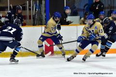 CIACT D3 Ice Hockey; #8 Newtown 7 vs. #9 Wilton 2 - Photo # 750