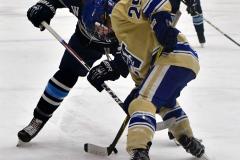 CIACT D3 Ice Hockey; #8 Newtown 7 vs. #9 Wilton 2 - Photo # 795