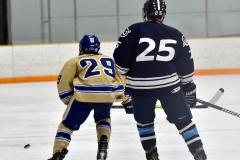 CIACT D3 Ice Hockey; #8 Newtown 7 vs. #9 Wilton 2 - Photo # 813
