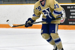 CIACT D3 Ice Hockey; #8 Newtown 7 vs. #9 Wilton 2 - Photo # 844