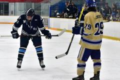 CIACT D3 Ice Hockey; #8 Newtown 7 vs. #9 Wilton 2 - Photo # 868