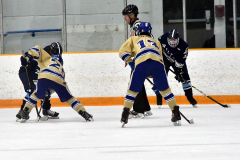 CIACT D3 Ice Hockey; #8 Newtown 7 vs. #9 Wilton 2 - Photo # 902