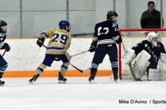 CIACT D3 Ice Hockey; #8 Newtown 7 vs. #9 Wilton 2 - Photo # 913