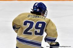 CIACT D3 Ice Hockey; #8 Newtown 7 vs. #9 Wilton 2 - Photo # 983