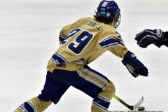 CIACT D3 Ice Hockey; #8 Newtown 7 vs. #9 Wilton 2 - Photo # 984