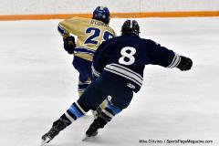 CIACT D3 Ice Hockey; #8 Newtown 7 vs. #9 Wilton 2 - Photo # 986