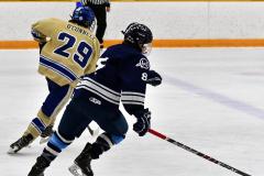 CIACT D3 Ice Hockey; #8 Newtown 7 vs. #9 Wilton 2 - Photo # 988