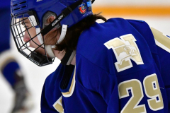 CIACT Ice Hockey D3 QFs; #1 Hand 5 vs. #8 Newtown 0 - Photo # 157