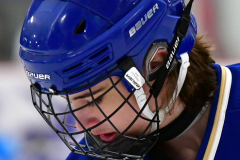 CIACT Ice Hockey D3 QFs; #1 Hand 5 vs. #8 Newtown 0 - Photo # 160