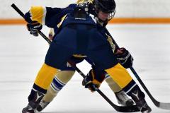 CIAC Ice Hockey; Focused on Newtown 7 vs. Mt. Everett 1 - Photo 500